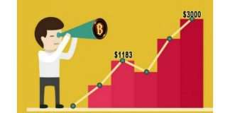 Bitcoin Price Went Up To Record $3000