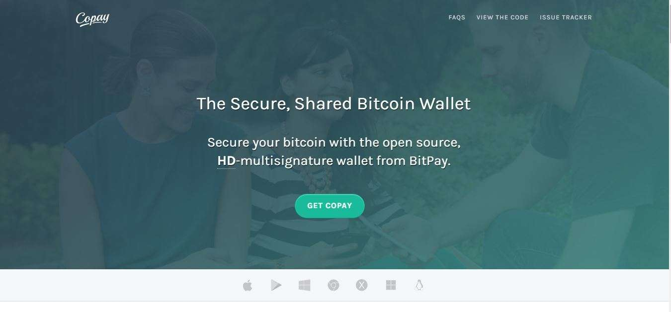 Copay review homepage