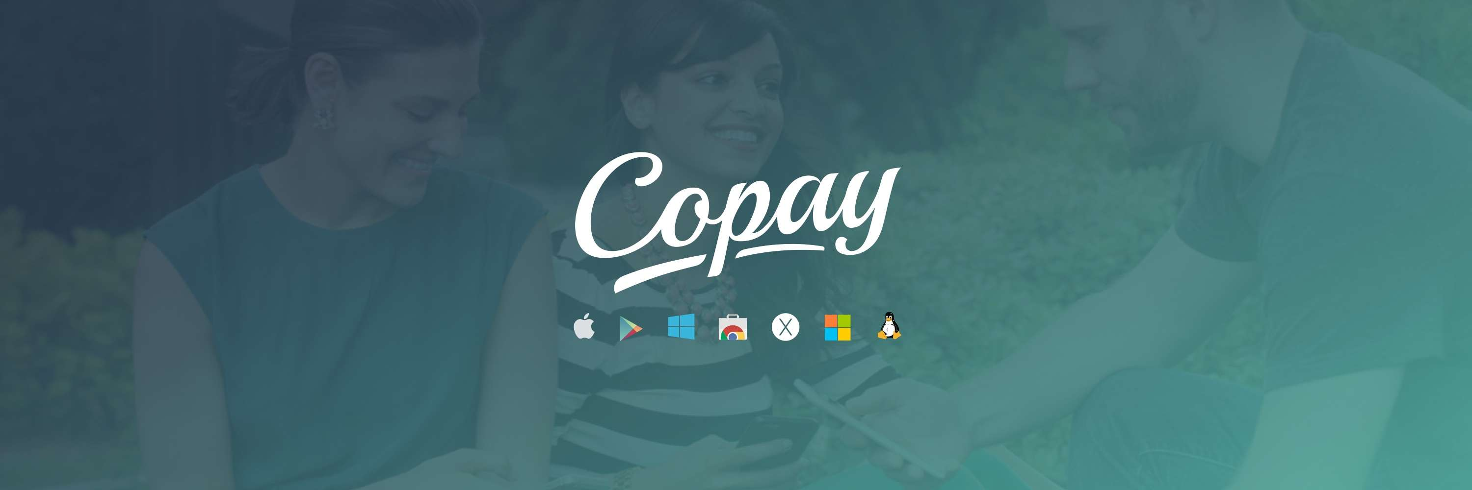 Copay review the interface