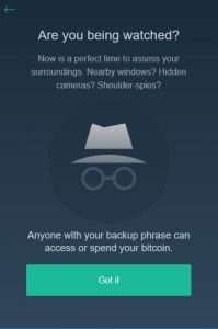 copay review backup your wallet