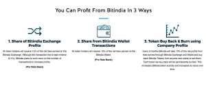Invest in BitIndia