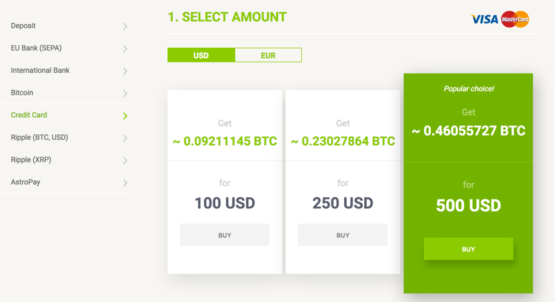 BitStamp Accepted Payment Methods