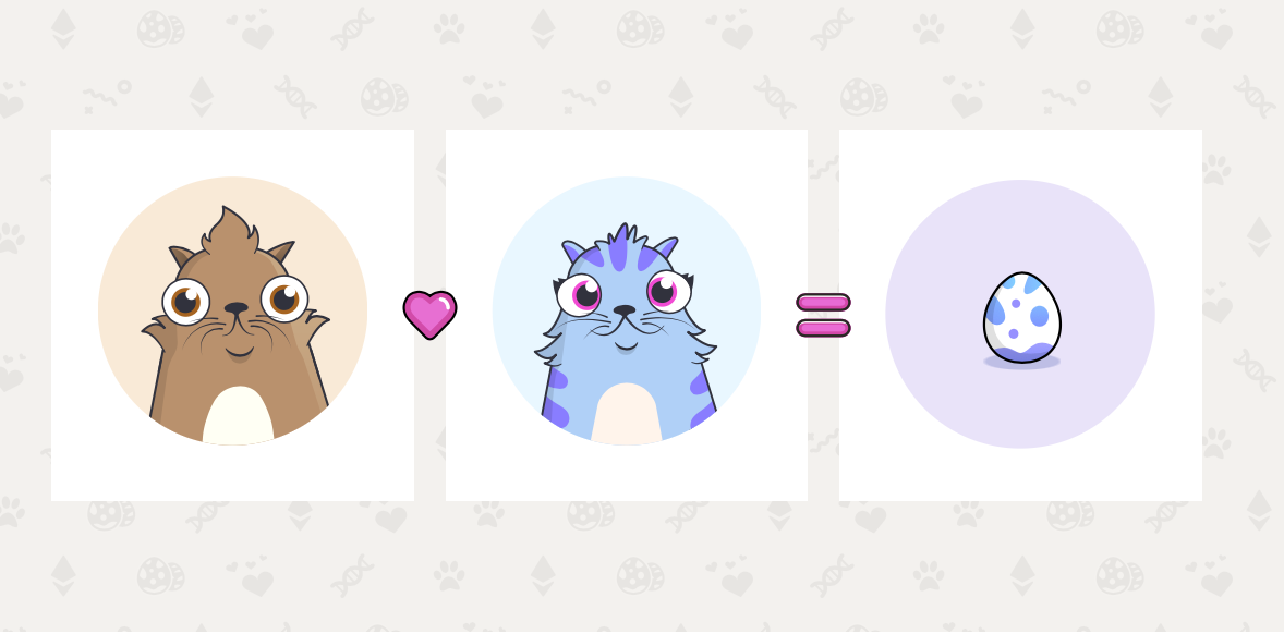 How To Play CryptoKitty